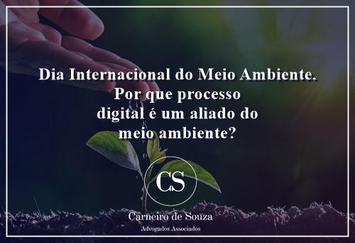 Dia Internacional do Meio Ambiente: por que o processo digital é um aliado do meio ambiente?